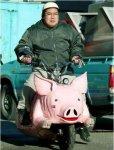 porco_motorizado